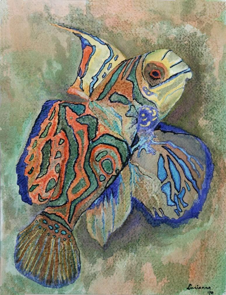 Tropical-fish-72