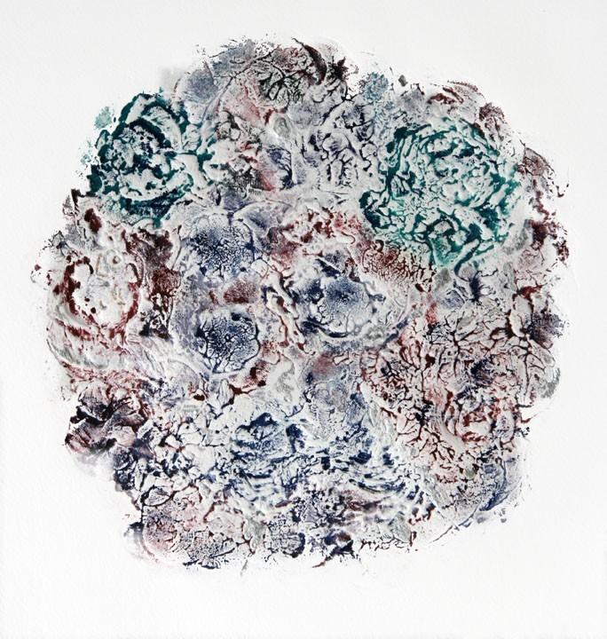 lichen-1-72