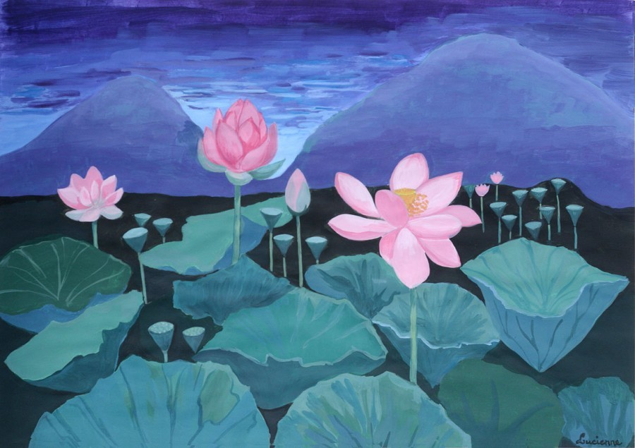 water-lilies-in-northern-italy-72
