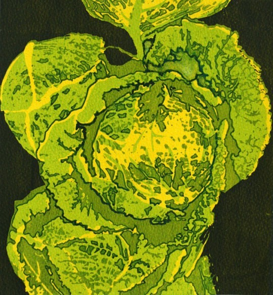 The-humble-but-beautiful-cabbage-1-72