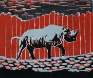 mar11-Rhinoceros-red-72