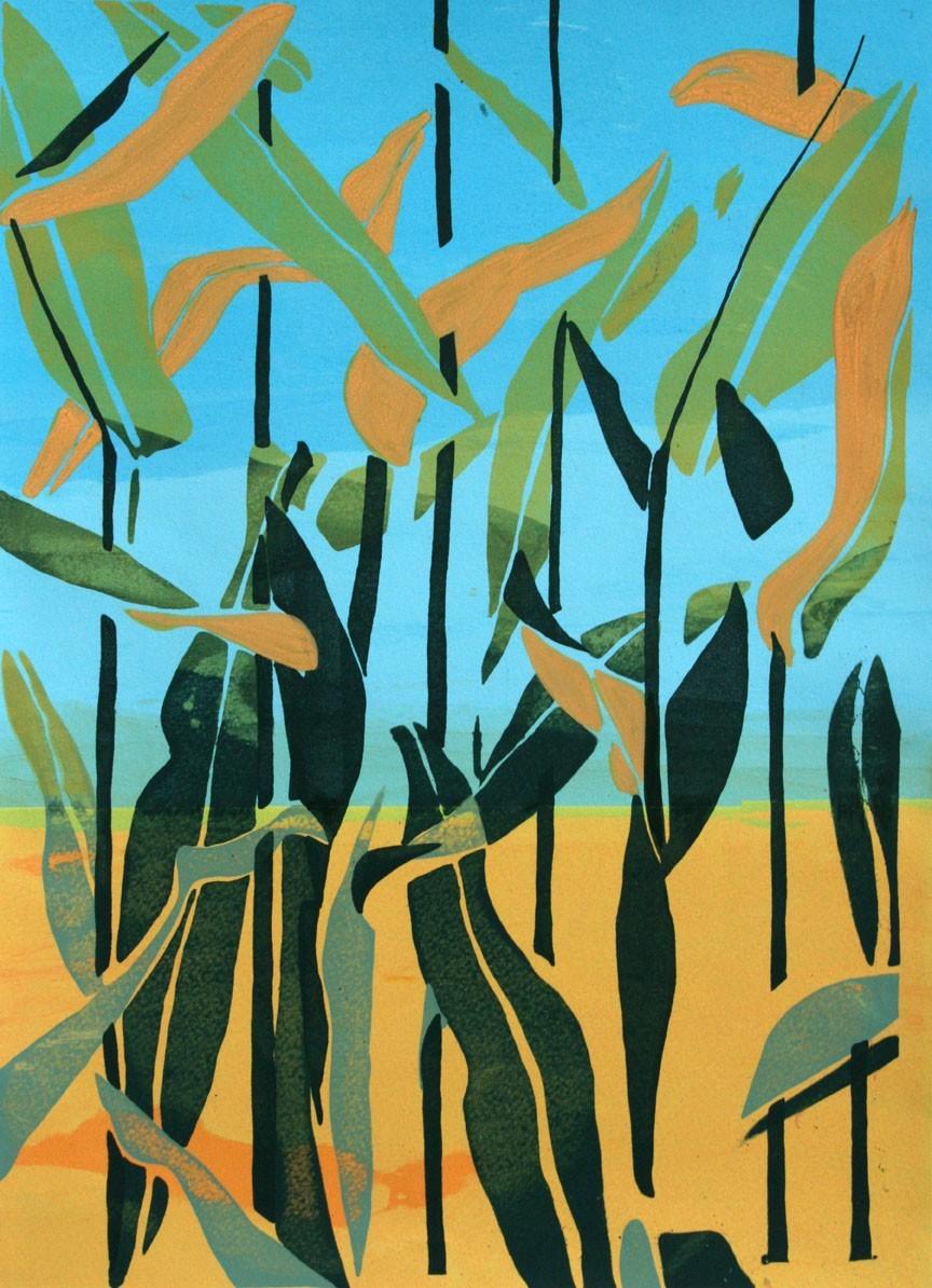 cornfield-72